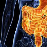 Лечение дискинезии кишечника